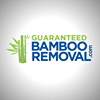 BambooRemoval .com