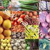 Slacks Fruit and Veg