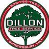 Dillon Tree Service Inc.
