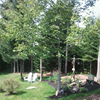 RockieMarsh Landscaping and Property Maintenance