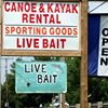 Allegheny Wilderness Outfitters Canoe & Kayak Rental