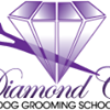 Diamond Cut Dog Grooming School