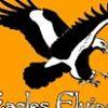 Eagles Flying