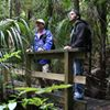 Adventure Puketi :Forestwalks and Guided Tours