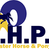 Leinster Horse and Pony Rescue