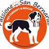 Passione San Bernardo Rescue Italia Onlus thumb
