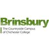 Brinsbury, Chichester College