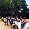Warwick International School of Riding