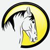 Equus Imports Ltd