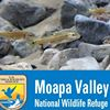 Moapa Valley National Wildlife Refuge