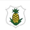 Jamaica Sailing Association