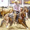 Tarin Rice Performance Horses