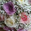 Fleur de Lea