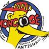 Mad Mongoose