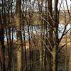 Colney Woodland Burial