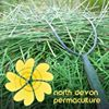 North Devon Permaculture