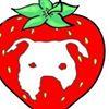 Strawberry Fields Animal Rescue