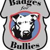Badges for Bullies