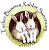 Tuckerbunnies Rabbit Sanctuary and Bunny Boarding.