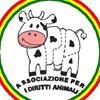 APIDA- Associazione Per I Diritti Animali