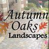 Autumn Oaks Landscapes