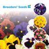 Breeders Seeds Ltd