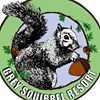 Grey Squirrel Resort and Vacation Rentals