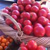 Kenwood Community Farmers Market