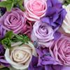 Flowers by Elizabeth-Anne