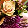 Buderim Floral Art