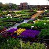 Hollies Farm Plant Centre