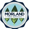 Morland Tree Services