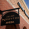 Salon Nouveau Aveda Concept and Lifestyle Salons & Spa