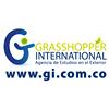 grasshopperinternational