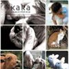 Korea Animal Rights Advocates -KARA