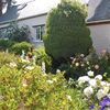 Snowdrop Cottage Holiday Let