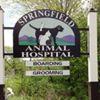 Springfield Animal Hospital, VT
