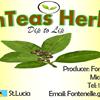 FonTeas Herbal