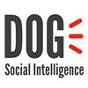 DOG COMUNICACIÓN