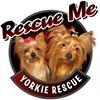 Rescue Me - Yorkie Rescue