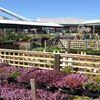 Klondyke Garden Centre, Polmont
