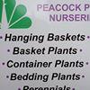 Peacock Plant Nurseries