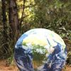 Interfaith Consortium for Ecological Civilization (ICEC)