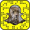 Wildlife World Zoo, Aquarium & Safari Park