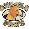 Beagle Paws - Calgary