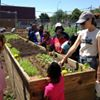 Brownsville Student Farm Project