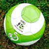 Mitchelton Soccer Club