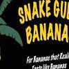 Snake Gully Bananas