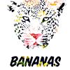 Bananas - 93 4884 660