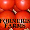 Forneris Farms